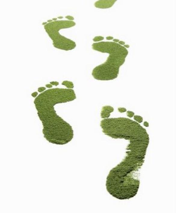 MEIK, MEIK Ingeniería y Consultoría, Gestión Ambiental, Huella de Carbono